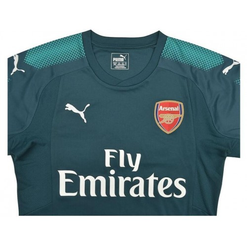new concept 76292 28ccc Arsenal CECH Green Goalkeeper #33 Home Replica Jersey Dark Green